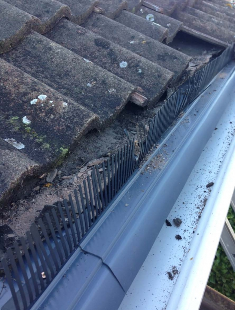 upvc eaves protection Stafford